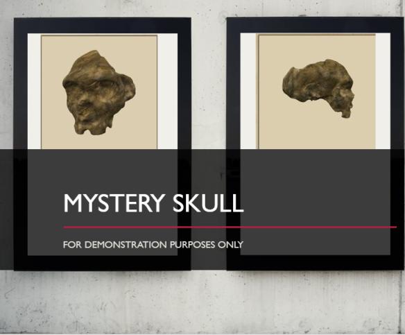 mysteryskullPowerPoint